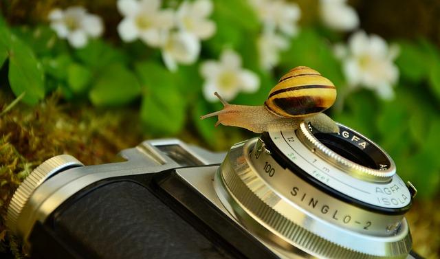 camera-1381663_640